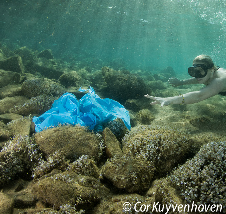 plasticbag in the ocean with girl diving for it with Bracenet